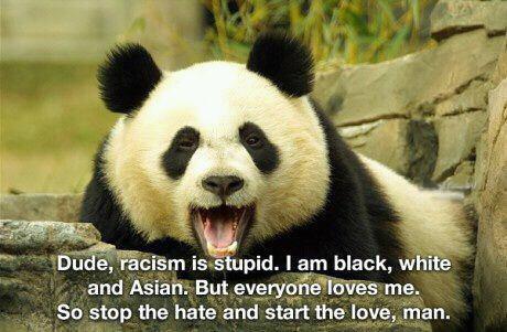 Un-racist Panda