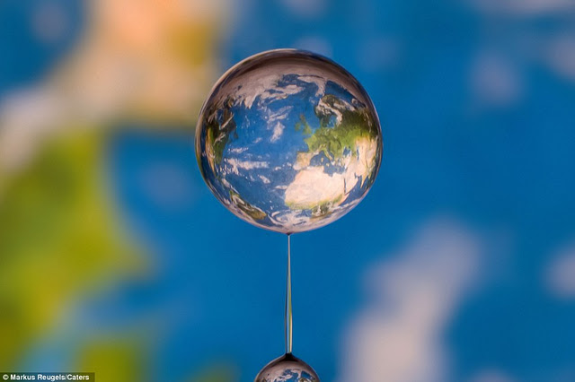 World Water Drop